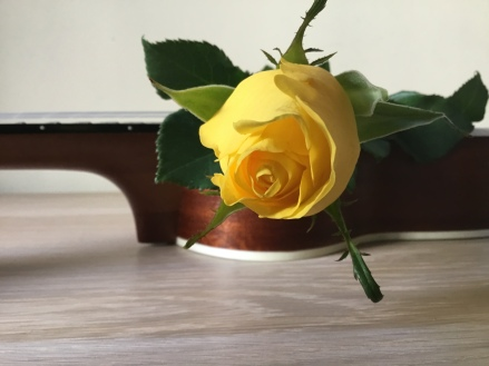 uke yellow rose